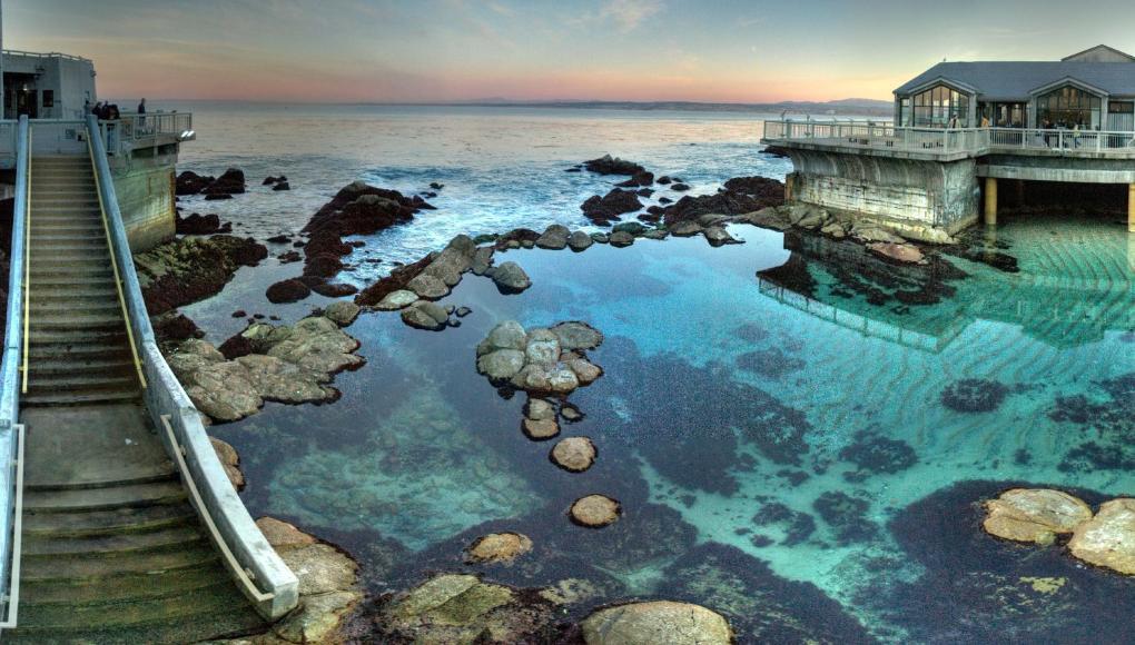 Monterey Bay University >> Study Abroad | CSU Monterey Bay